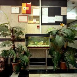 The Aquarium Lobby