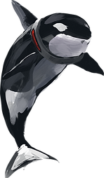 Orca.png