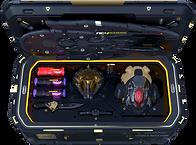 Golden Crate 1.png