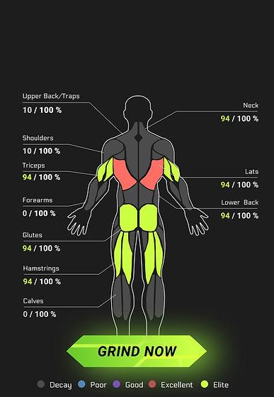 anatomical%20breakdown_edited.jpg