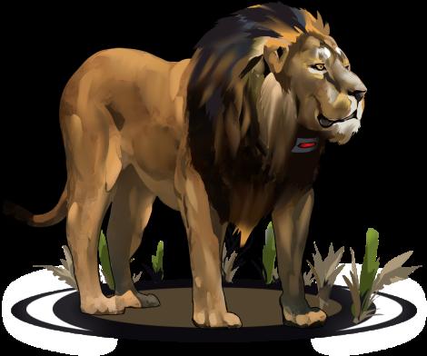 Asiatic Lion DNA Sample