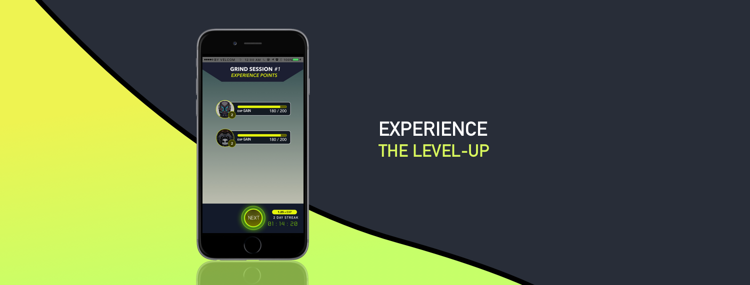 Experience The Level-Up