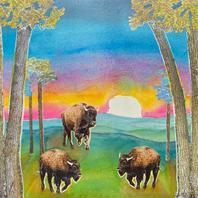 Arbuckle Buffalo Sunset