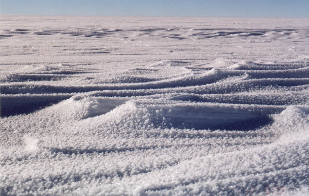 Windswept Ice Fields