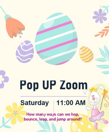 POP UP ZOOM.png