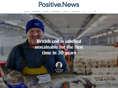 MSC North Sea Cod pic from Lark Rise Pictures on Positive.News