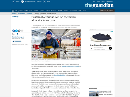 North Sea cod back on the menu! Lark Rise Pictures photos for MSC on the BBC and in the Guardian