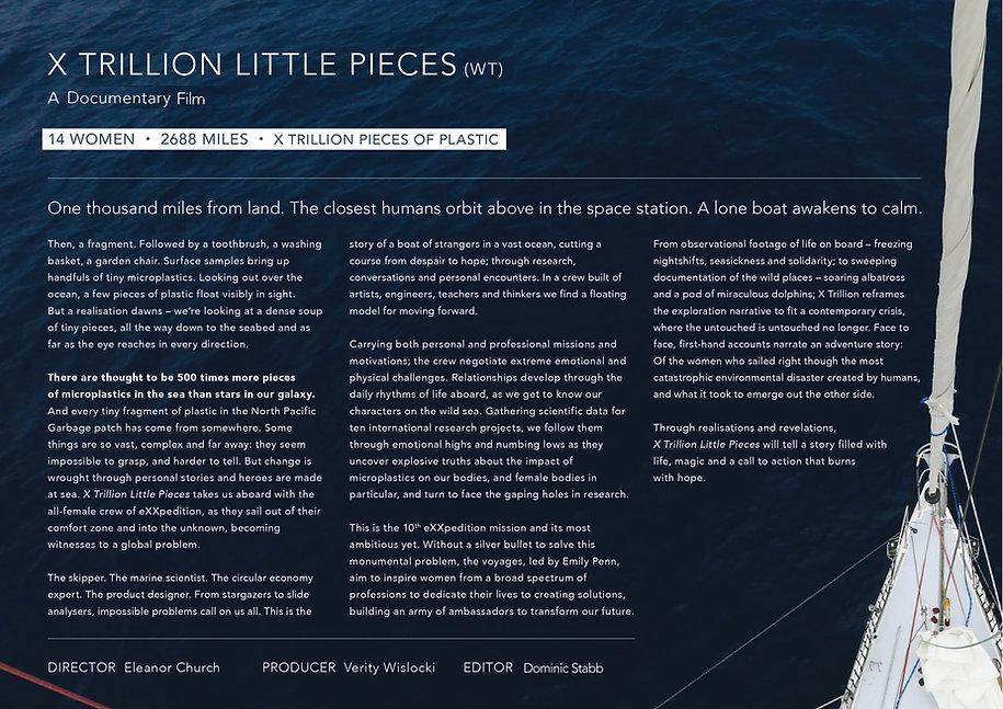X_Trillion_Little_Pieces_proposal-long.j