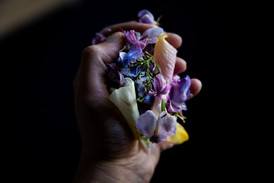 Petals for Perfume