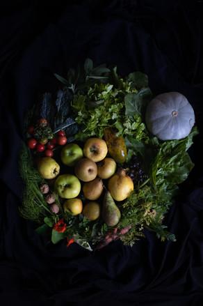 Still Life Food Photography