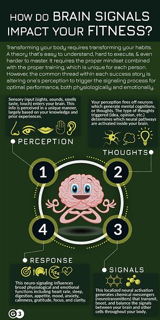 G3 neurohealth art.png