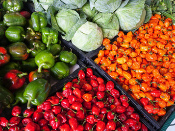 4 Solutions for the Global Food Security Crisis
