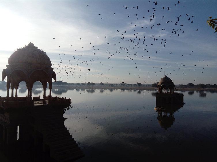 indian_birds.jpg