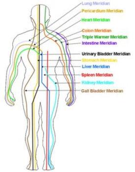 acupuncture-meridiams-236x300.jpg