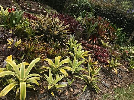 jardín verde sostenible