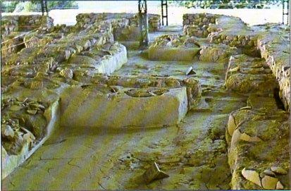 THE PALACE OF NESTOROS 1 A