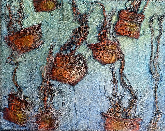 Sea Jellies.HEIC