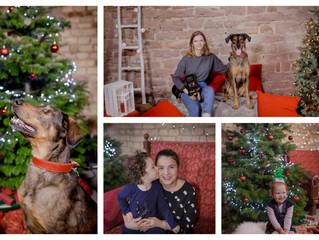 Merry Christmas(shoot)
