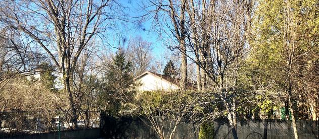 SPRING, what Spring?