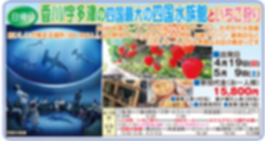 四国水族館大洲.png