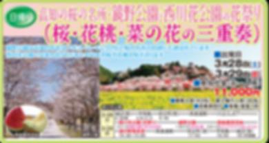 西川花公園宇和島.png