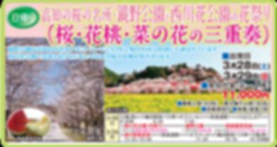 西川花公園大洲.png