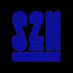 S2H New Bleu 072C.png