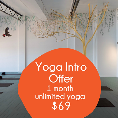 1 month intro offer yoga.png