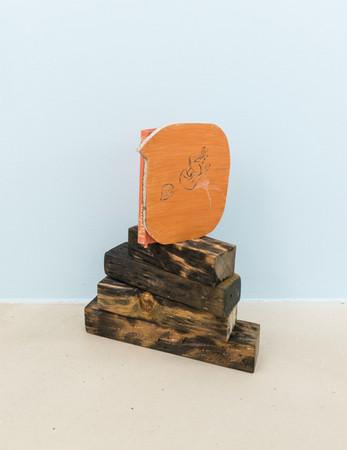 Perfume, 2016, wood, ink and a book, 46x37x18 cm.jpg