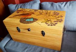 robin trunk