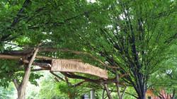 McKinley Community Play Garden