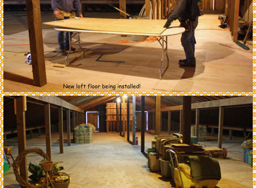 New Barn Loft Floor Installed Thanks To The Generosity of Brennan Equine Welfare Fund
