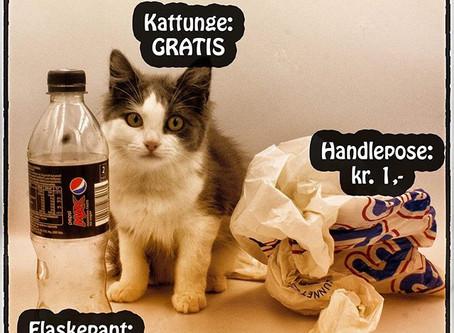 Er en katt virkelig verdt mindre enn en pose eller en panteflaske?