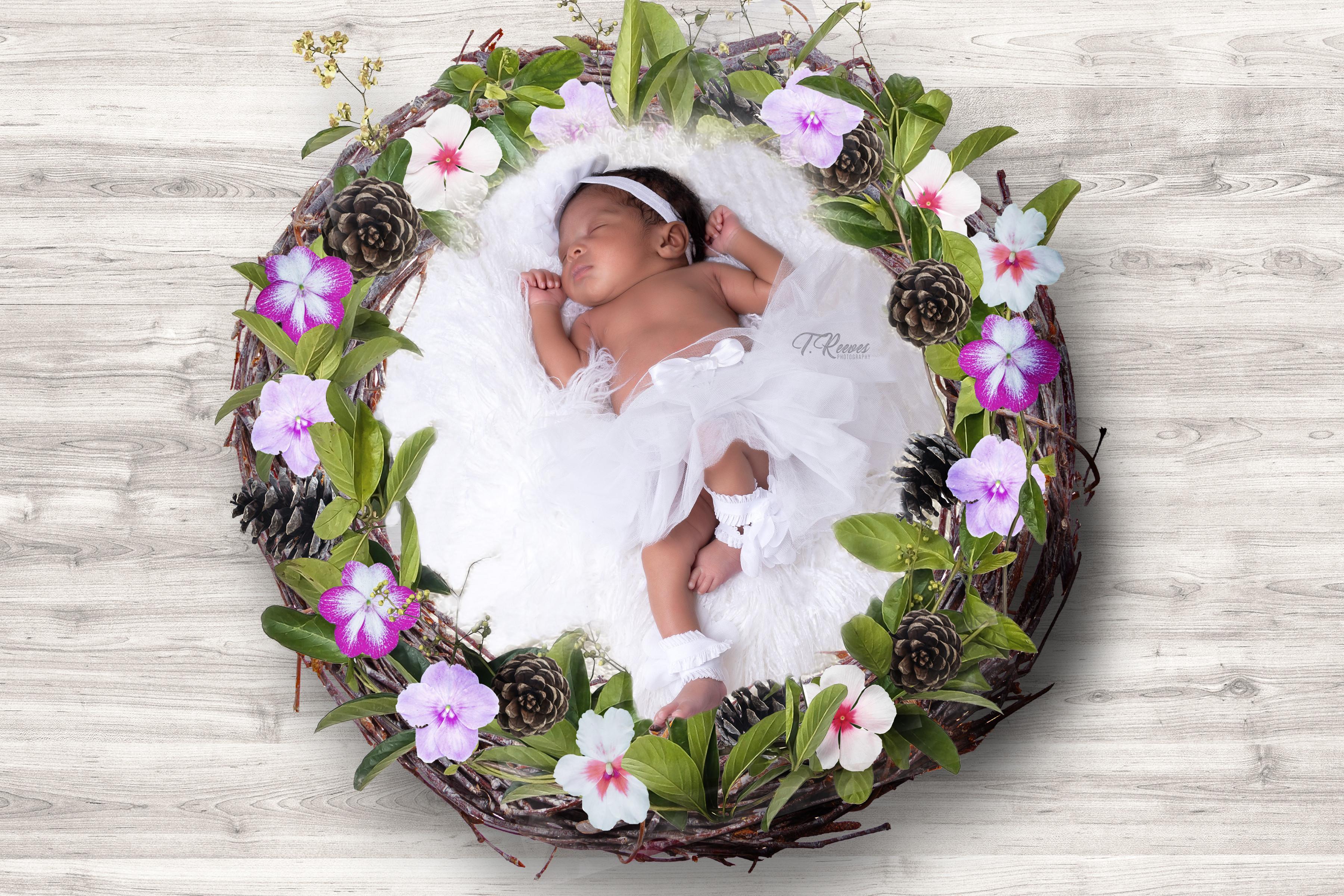 Newborn Session Images: