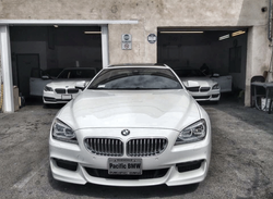 BMW All Paint Protection