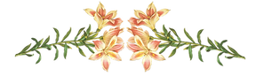 Illustration Fleurs roses