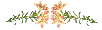 flores marco