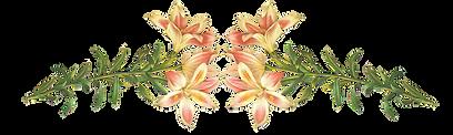Pink Flowers Illustration