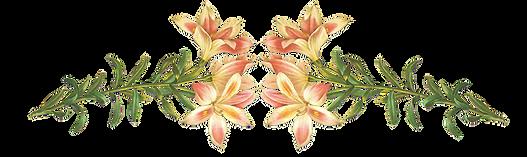 ピンクの花のイラスト