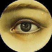 circleeye.png