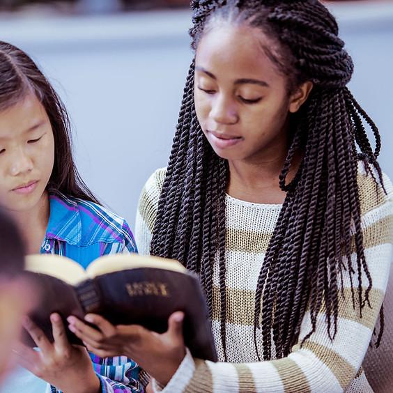 Small Group Bible Study