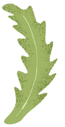 fun leaf for decoration