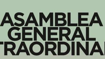 Asamblea General Extraordinaria 6 de noviembre de 2019