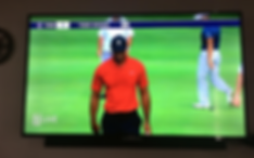 Tiger Woods on a television