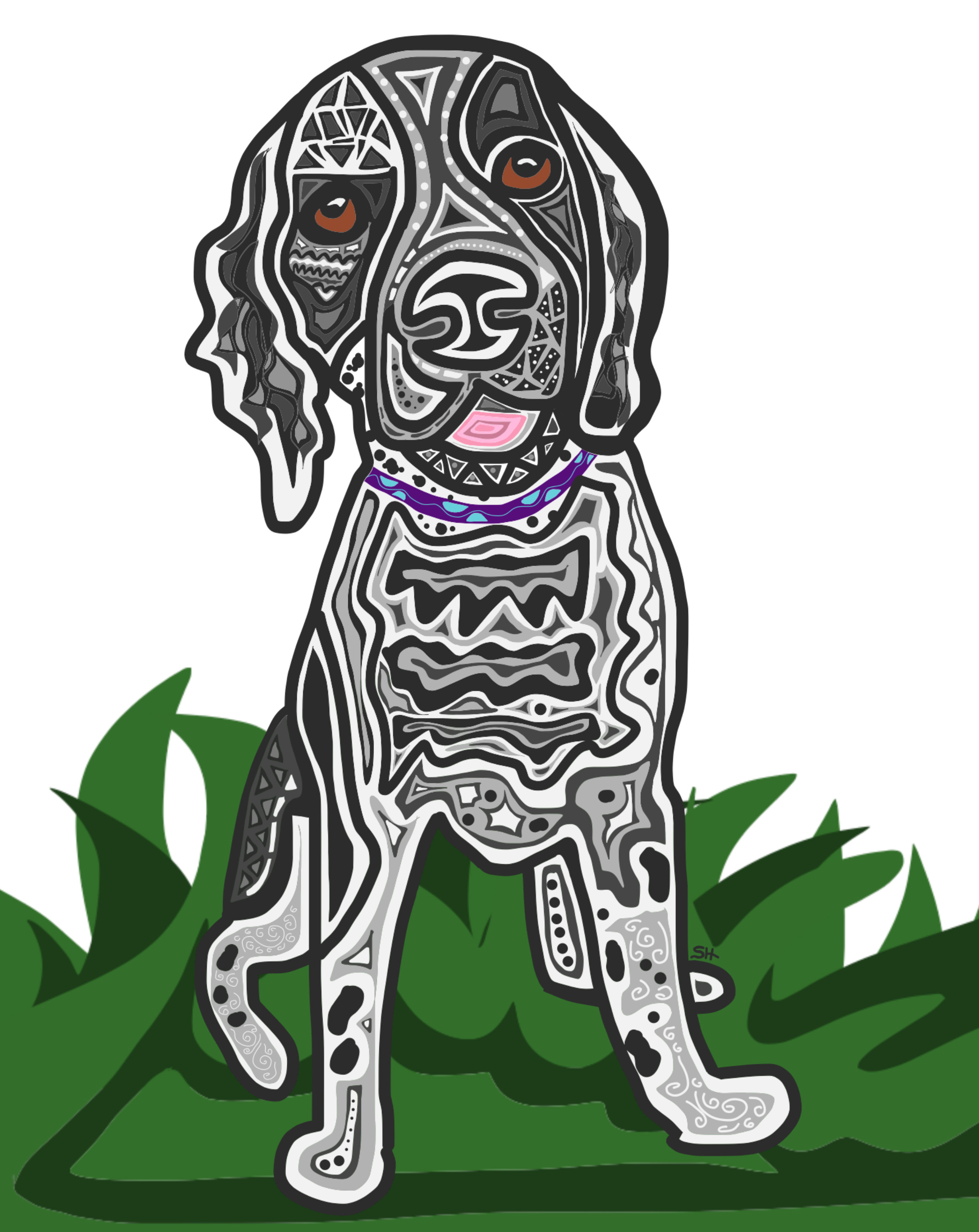 springer spaniel chloe 8x10 with grass