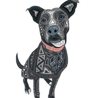 Sarah Hiers Design Gray Pitbull Drawing