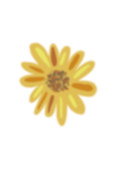 sunflower ipad drawing.png