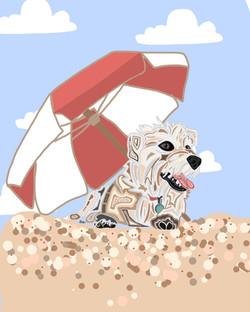 Shaggy white dog beth