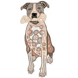 Tom Houpt Dog Portrait