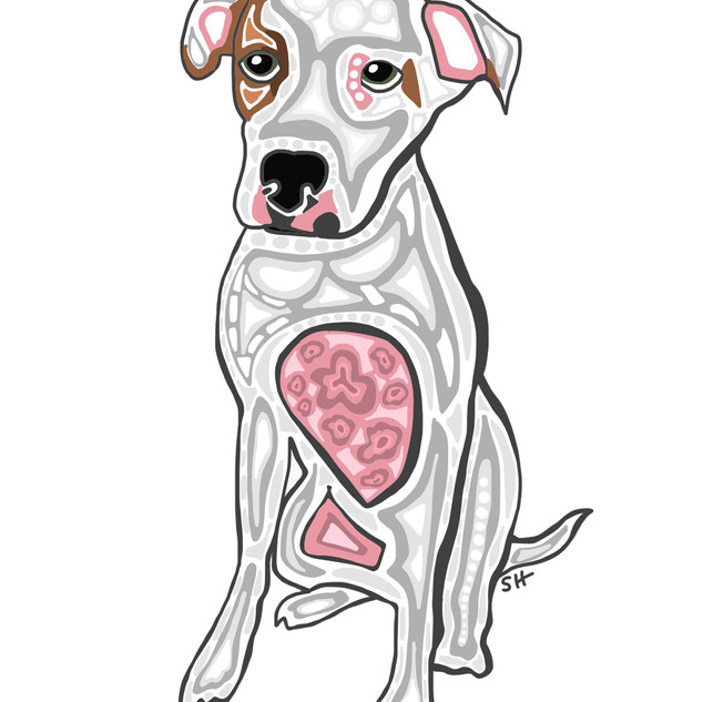 Sarah Hiers Design Pitbull Drawing